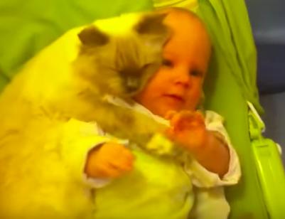 Keine Sorge, die Katze passt auf ihn auf!